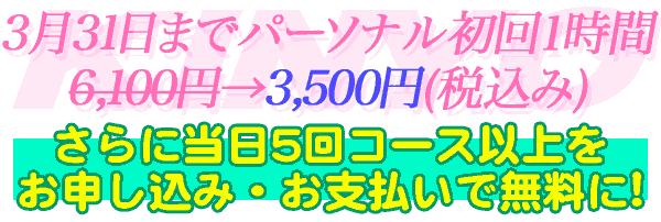 月6日まで総合コース初回1時間6,100円→3,500円(税込み)